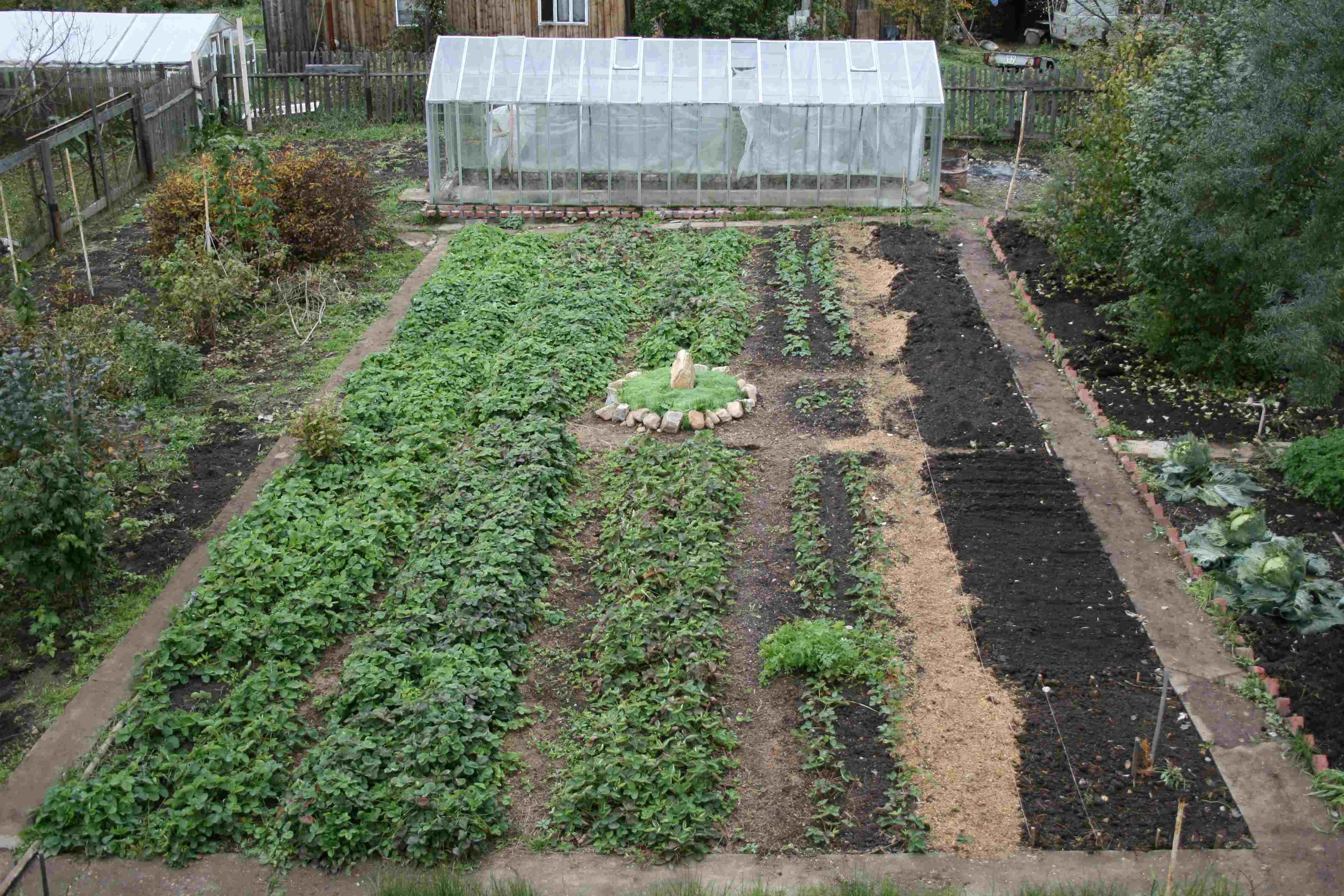 Планировка огорода 5 соток своими руками фото
